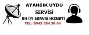 Sinop Ayancık Uydu Servisi