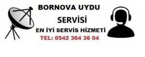 İzmir Bornova Uydu Servisi