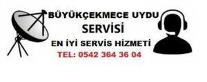 Büyükçekmece Atatürk Mahallesi Uydu Servisi