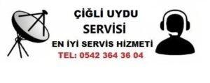 İzmir Çiğli Uydu Servisi