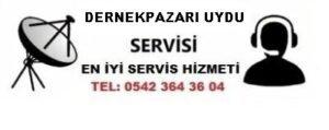 Trabzon Dernekpazarı uydu servisi