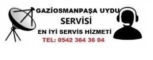 Gaziosmanpaşa Karlıtepe Uydu Servisi