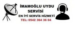 adana imamoğlu uydu servisi