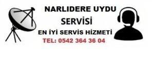 İzmir Narlıdere Uydu Servisi