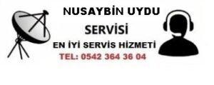 Mardin Nusaybin Uydu Servisi
