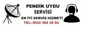 Pendik Ahmet Yesevi Mahallesi Uydu Servisi