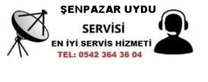 Kastamonu Şenpazar Uydu Servisi