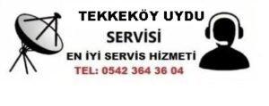 Samsun Tekkeköy Uydu Servisi