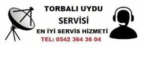 İzmir Torbalı Uydu Servisi