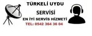 Sinop Türkeli Uydu Servisi
