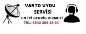 Muş Varto Uydu Servisi