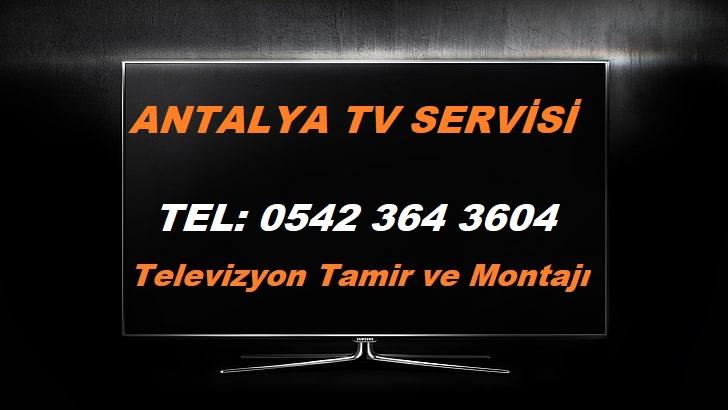 Antalya Tv Servisi