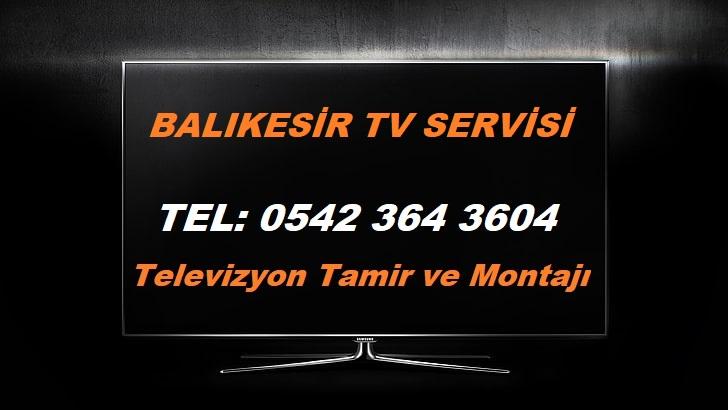 Balıkesir Tv Servisi