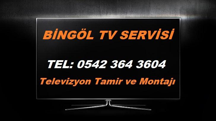 Bingöl Tv Servisi