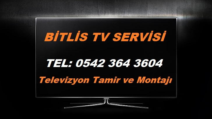 Bitlis Tv Servisi