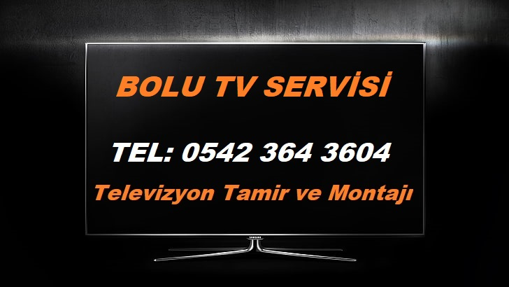 Bolu Tv Servisi