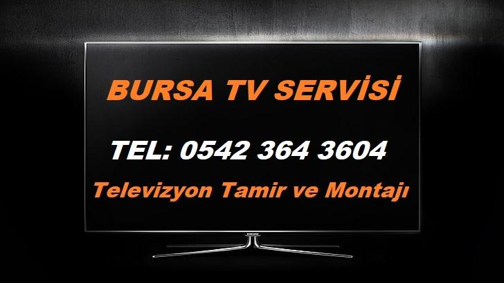 Bursa Tv Servisi