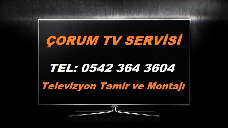 Çorum Tv Servisi