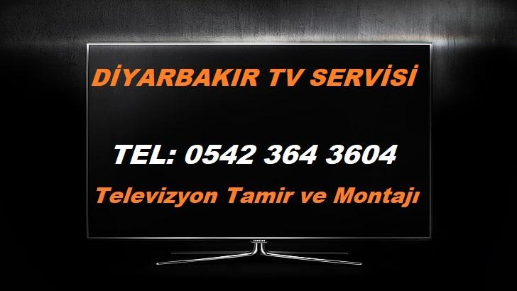 Diyarbakır Tv Servisi
