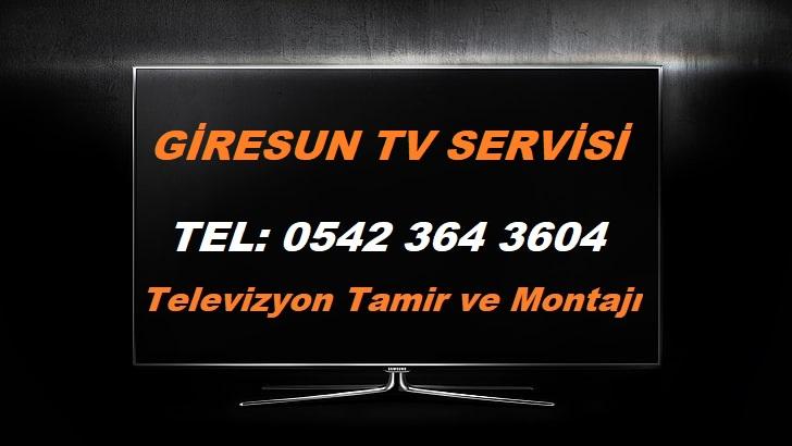 Giresun Tv Servisi