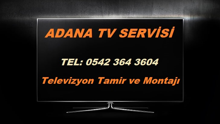 adana tv servisi