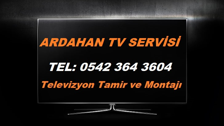 Ardahan TV Servisi