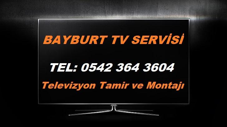 Bayburt TV Servisi
