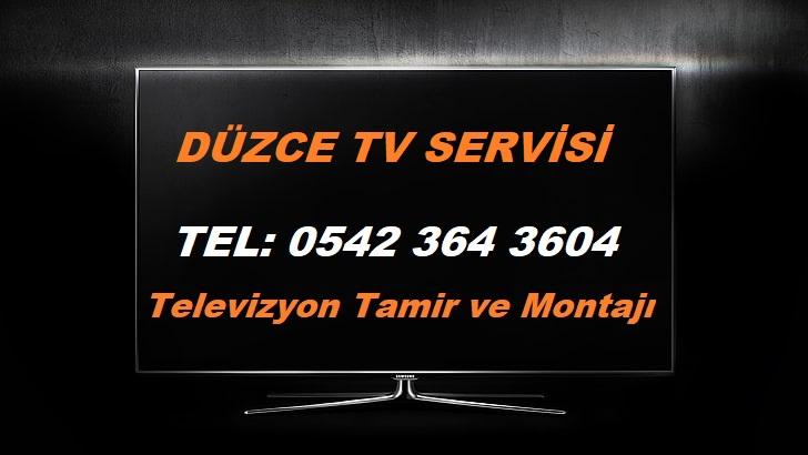 Düzce TV Servisi