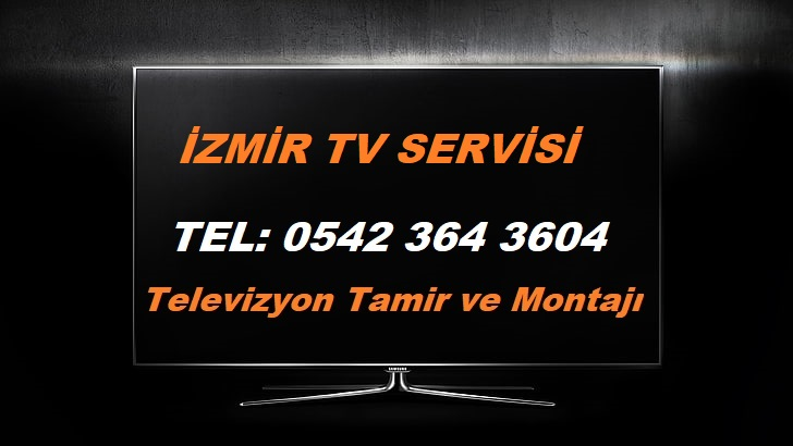İzmir TV Servisi
