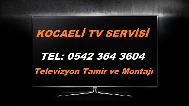 Kocaeli TV Servisi