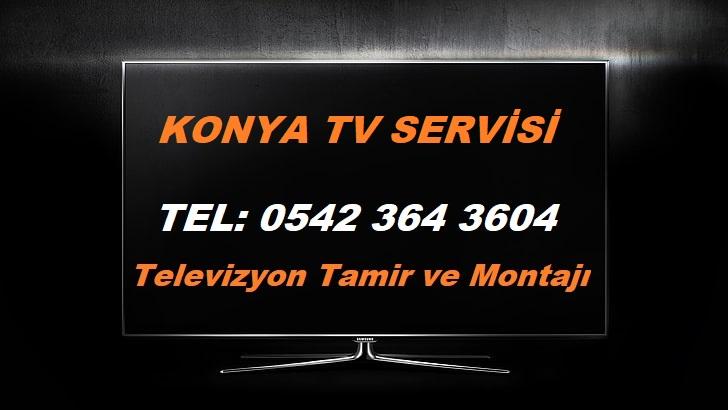 Konya TV Servisi