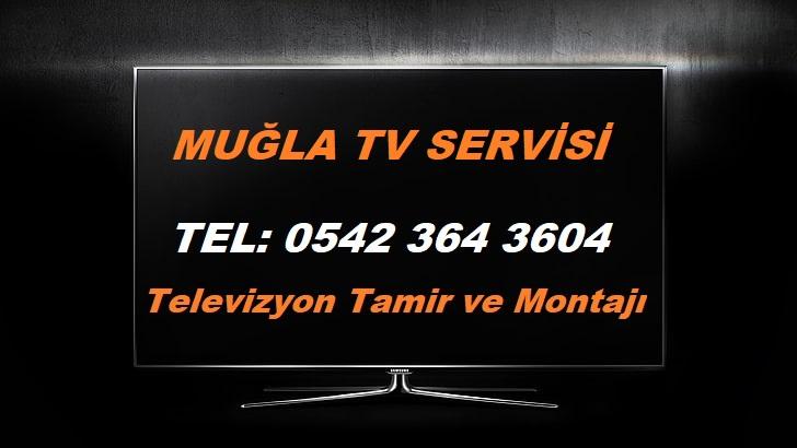 Muğla TV Servisi
