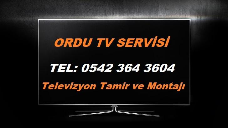 Ordu TV Servisi
