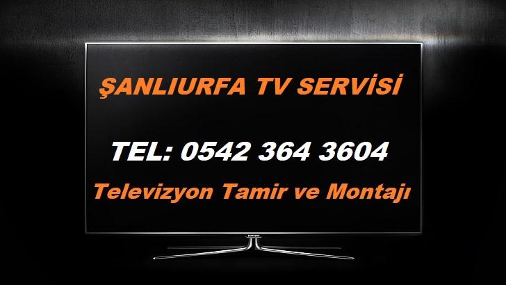 Şanlıurfa TV Servisi