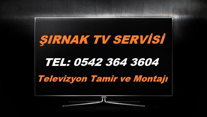 Şırnak TV Servisi